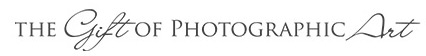 Newborn and Maternity Photographer in Houston