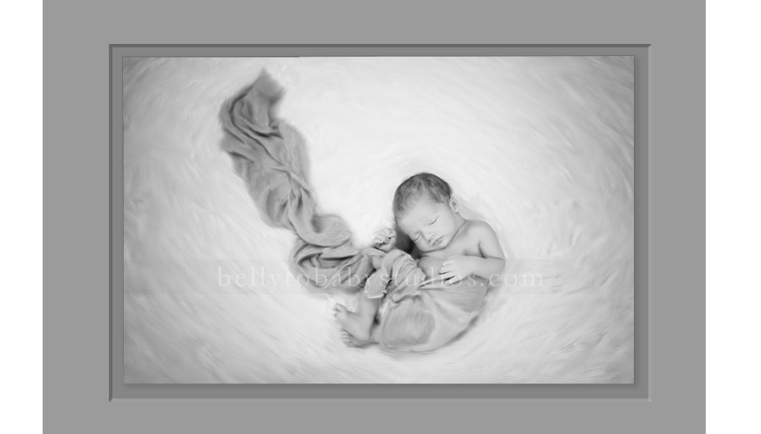 newborn portrait photographers